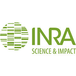 analyses-bois-inra